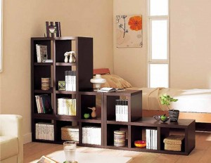 modern-book-shelves-decorating-living-room-interior