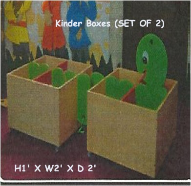 Kinder Boxes (SET OF 2)